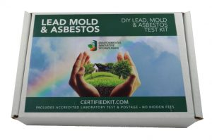 Lead Mold Asbestos Front